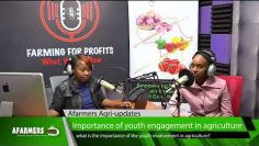 Importance of youth engagement in Agriculture