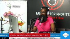YOUTH PARTICIPATION IN AGRICULTURE